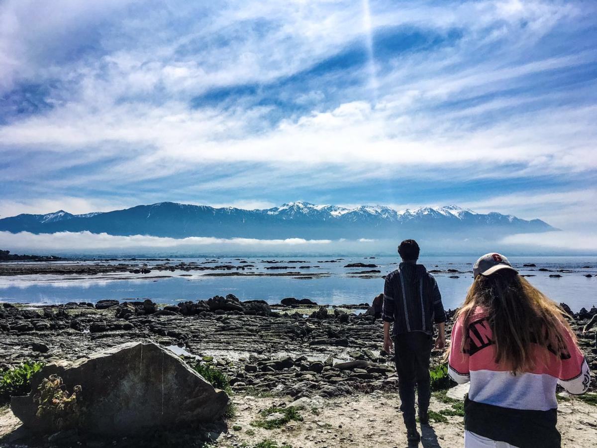 Nieuw Zeeland Facebook: Foto's & Video's Kaikoura